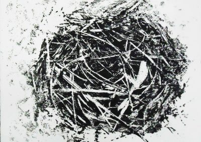 Ninho Habitado II