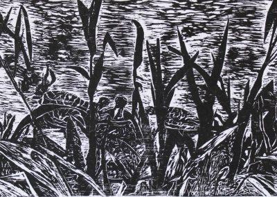 Lagoa do Vilão